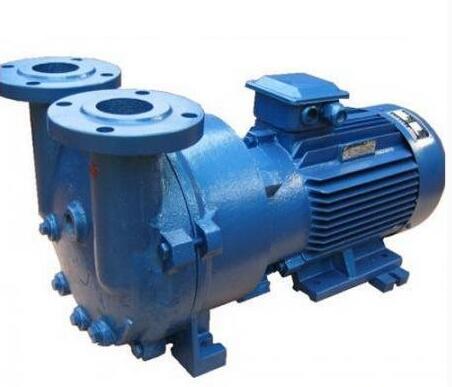 2BV5111水环式rb88