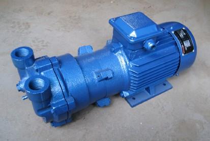 2BV2061水环式rb88
