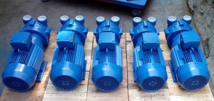 2Bv2060水环式rb88